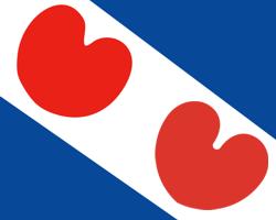 Persbericht: Heerenvener ontdekt de echte Friese vlag ...